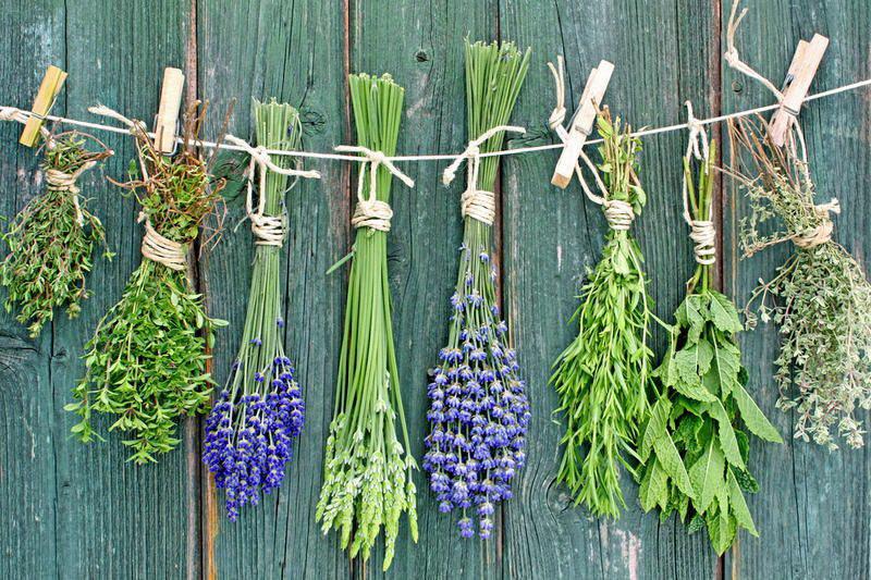 Круче любой консервации в разы! Как заготовить овощи и фрукты впрок без варки и заморозки?