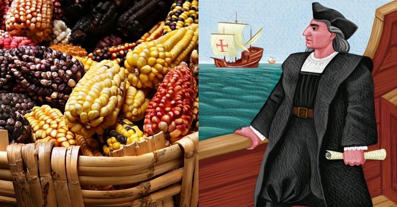 Нужно ли варить кукурузную кашу? полезная и богатая микроэлементами