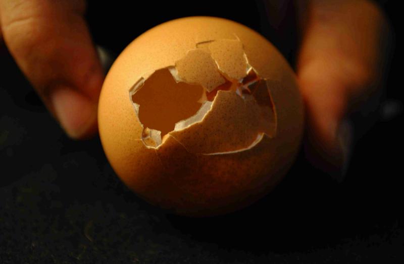 Никогда не выливай воду после варки яиц! Ты удивишься, когда узнаешь почему.