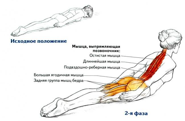 Одно-единственное упражнение, которое исправит Вашу осанку