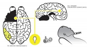 Как изменить свойства психики человека с помощью обычной воды