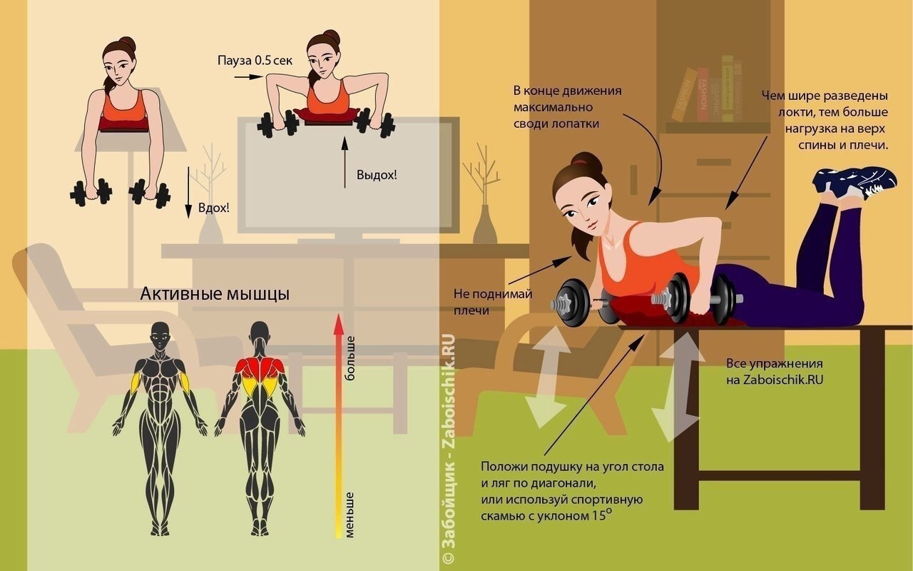Тренируем все группы мышц в домашних условиях