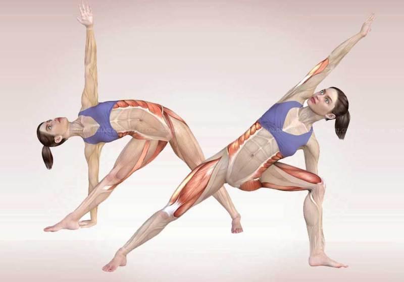 Страх живет в ногах: зеркальное отражение в эмоций в нашем теле